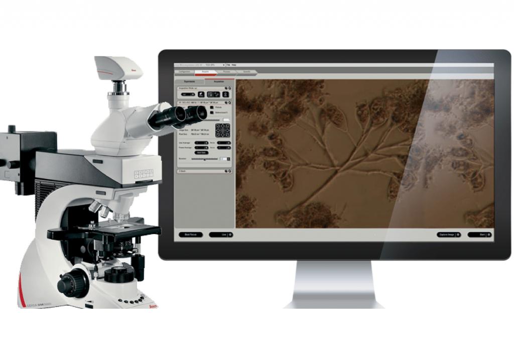 análise microscópica do lodo